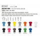 Informations T-shirt BC042 inspire men B&C